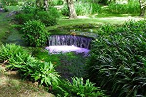 Фотография Сады Водопады Италия Ninfa Cisterna di Latina Природа