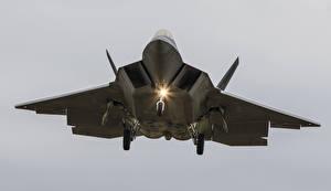 Фотографии Самолеты Истребители Lockheed F-22A Raptor