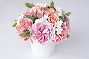 Фотографии Букеты Розы Пионы Фрезия Цветы