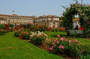 Обои Италия Парки Розы Кусты Трава Monza Lombardy Природа