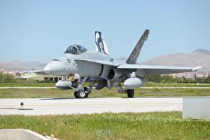 Фото Самолеты Истребители McDonnell Douglas F-18C Hornet
