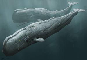 Фотографии Подводный мир Фантастическая техника Двое Фантастика