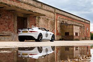 Фотография Jaguar Белый Вид сзади Лужа 2014 F-Type Project 7 UK-spec машины