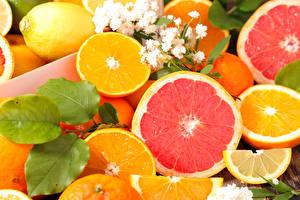 Картинка Цитрусовые Лимоны Апельсин Грейпфрут Продукты питания