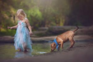 Фотография Собаки Девочки Платье Ручеек Дети