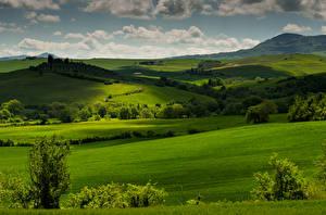 Фотография Италия Пейзаж Поля Луга Тоскана Природа