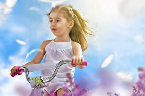 Фото Велосипедный руль Девочки Велосипед ребёнок