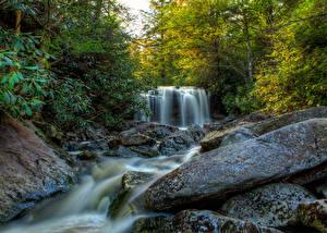 Фотография США Парки Водопады Камни Деревья Elakala Falls Blackwater Falls State park