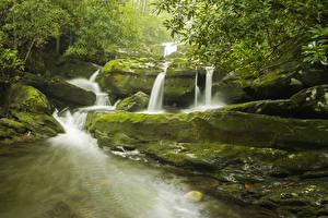 Фотографии Штаты Парки Водопады Камень Мох Great Smoky Mountains National Park