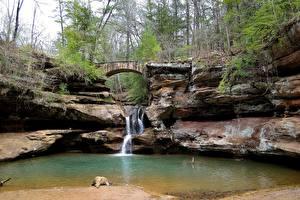 Фотографии Штаты Водопады Мосты Утес Hocking Hills State Park