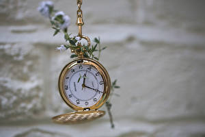 Фотография Часы Карманные часы