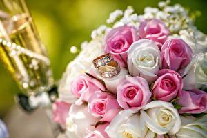 Фото Розы Букеты Кольцо Свадьба Цветы