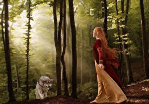 Картинка Волки Леса Рыжие Фантастика Девушки