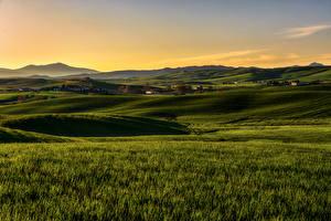 Картинки Италия Поля Луга Тоскана Природа