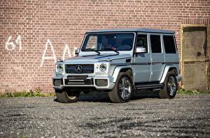 Фотографии Mercedes-Benz Серебристый 2015 Edo Competition G 63 AMG (W463) Автомобили