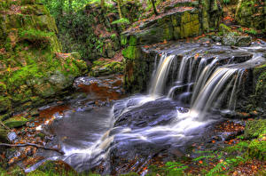 Фотография Англия Водопады Мох Jepsons Clough Waterfall Rivington Природа