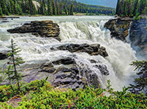 Фото Штаты Водопады Леса Парки Скала Джаспер парк Athabasca Falls