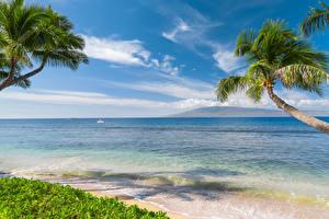 Обои Тропики Побережье Волны Небо Океан Гавайи Пальмы Природа фото