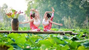 Фотография Гимнастика Азиатки Двое Растяжка упражнение девушка