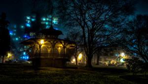 Обои Канада Дома Пагоды Ванкувер Ночь Уличные фонари Деревья Города