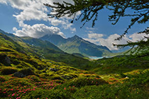 Картинка Франция Пейзаж Гора Альп Облака Траве Lanslebourg Mont Cenis Природа