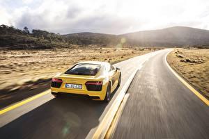 Обои Дороги Audi Сзади Желтый R8 V10 Авто