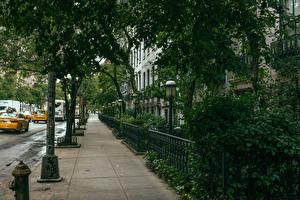 Обои Штаты Улица Тротуар Нью-Йорк Города