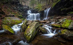 Картинка Штаты Парки Водопады Камень Мох Ricketts Glen State Park