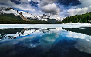 Картинка Гора Пейзаж Озеро Канада Джаспер парк Maligne Lake Alberta Природа