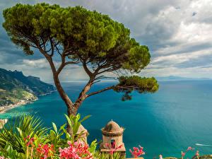 Обои Италия Море Берег Деревья Ravello Природа