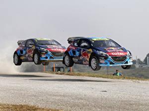 Фото Peugeot Стайлинг Вдвоем 2014 208 WRX Автомобили
