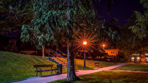 Фотографии Хорватия Здания Загреб Деревья Скамья Ночные Уличные фонари Samobor Города