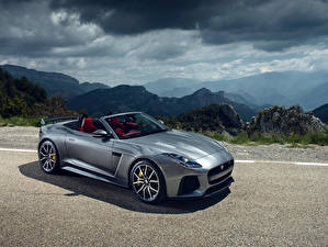 Фотографии Ягуар Серые Кабриолет 2016 F-Type SVR Convertible Worldwide автомобиль