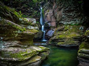 Фото США Парки Водопады Скала Мох Ricketts Glen State Park Природа