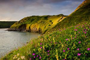 Обои Великобритания Берег Космея Wales Природа