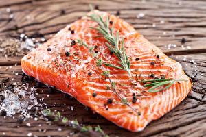 Фотографии Морепродукты Рыба Приправы Еда
