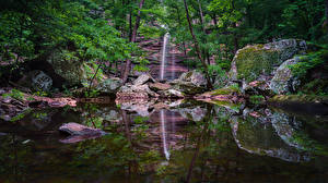 Фотография США Парки Водопады Камни Деревья Мох Petit Jean State Park Arkansas