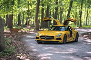 Фотография Mercedes-Benz Желтый Металлик 2013-16 SLS 63 AMG Black Series Автомобили