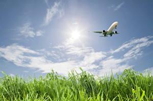 Картинки Самолеты Пассажирские Самолеты Небо Облака Трава