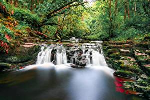 Обои Великобритания Водопады Леса Brecon Beacons Wales Природа