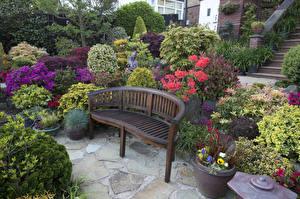 Обои Англия Сады Кустов Скамья Walsall Garden Природа