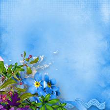 Картинка Незабудка Шаблон поздравительной открытки Цветы