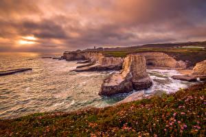 Обои США Побережье Рассветы и закаты Пейзаж Маргаритка Калифорния Скала Santa Cruz Природа фото