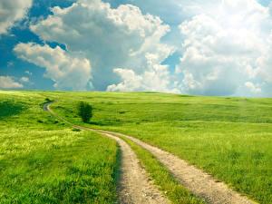 Фотография Пейзаж Лето Дороги Поля Небо Облака Трава Природа