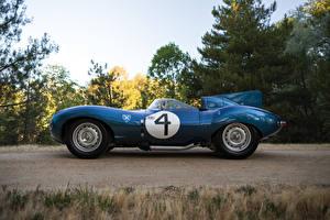 Фотографии Jaguar Винтаж Синих Металлик Сбоку 1955-56 D-Type Short Nose with stabilisation fin машины