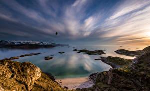 Обои Норвегия Побережье Рассветы и закаты Небо Sandvika Природа фото