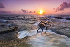 Фотографии Испания Море Рассветы и закаты Солнце Горизонт Alicante Природа