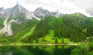 Фотография Австрия Горы Озеро Леса lake Gosausee Природа