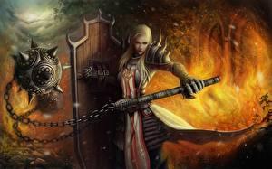 Обои Diablo III Воины Пламя Блондинка Доспехи Щит Reaper of Souls, Crusader Игры Фэнтези Девушки