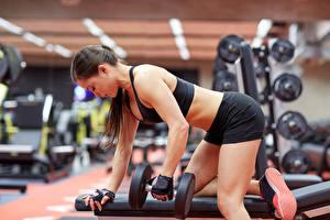 Фотография Фитнес Гантели Спортзал Физические упражнения Девушки